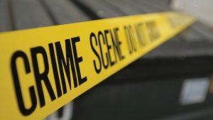 diventare criminologo a reggio emilia